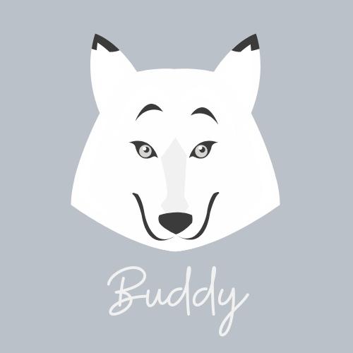 Buddy The White Border Collie